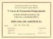 Diploma Cirugía Laparoscopica 1992