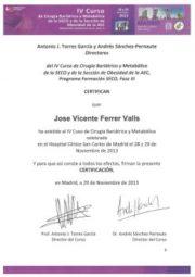 JVFerrer-SECO-AEC-Madrid-noviembre2013-adaptado