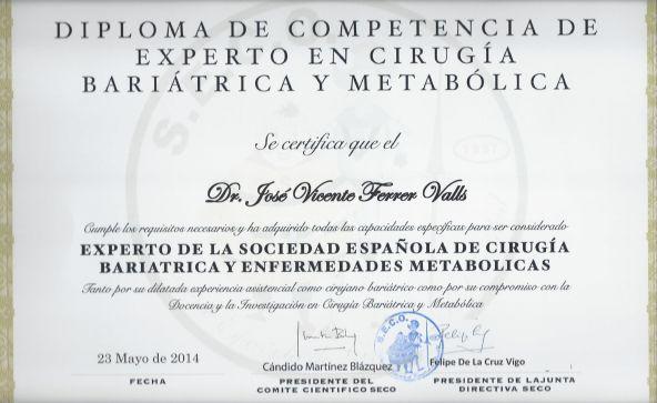 Revista-Noviembre2014-diploma600x350