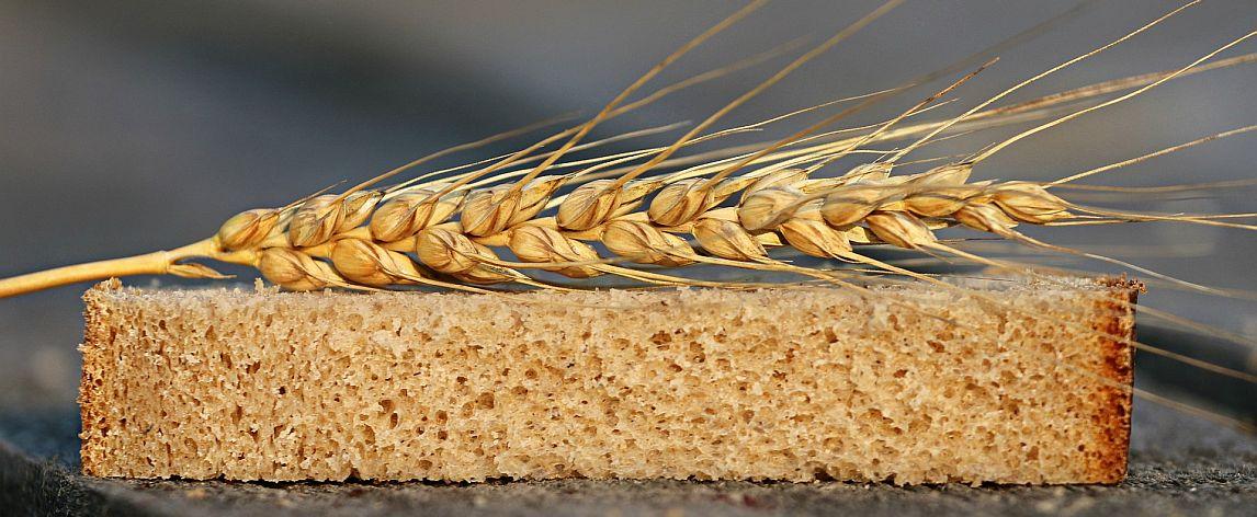 calidad del pan